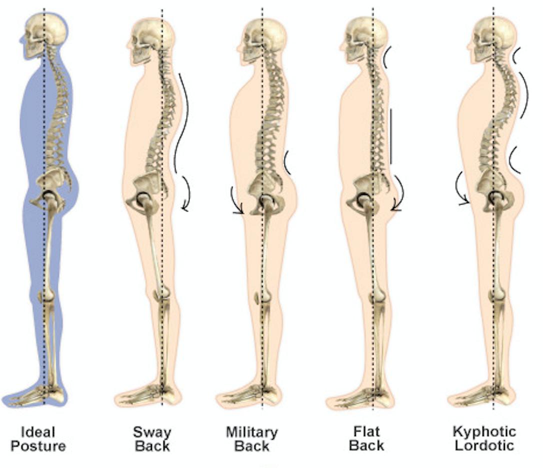 Pourquoi la posture est-elle aussi fondamentale dans votre progression ?