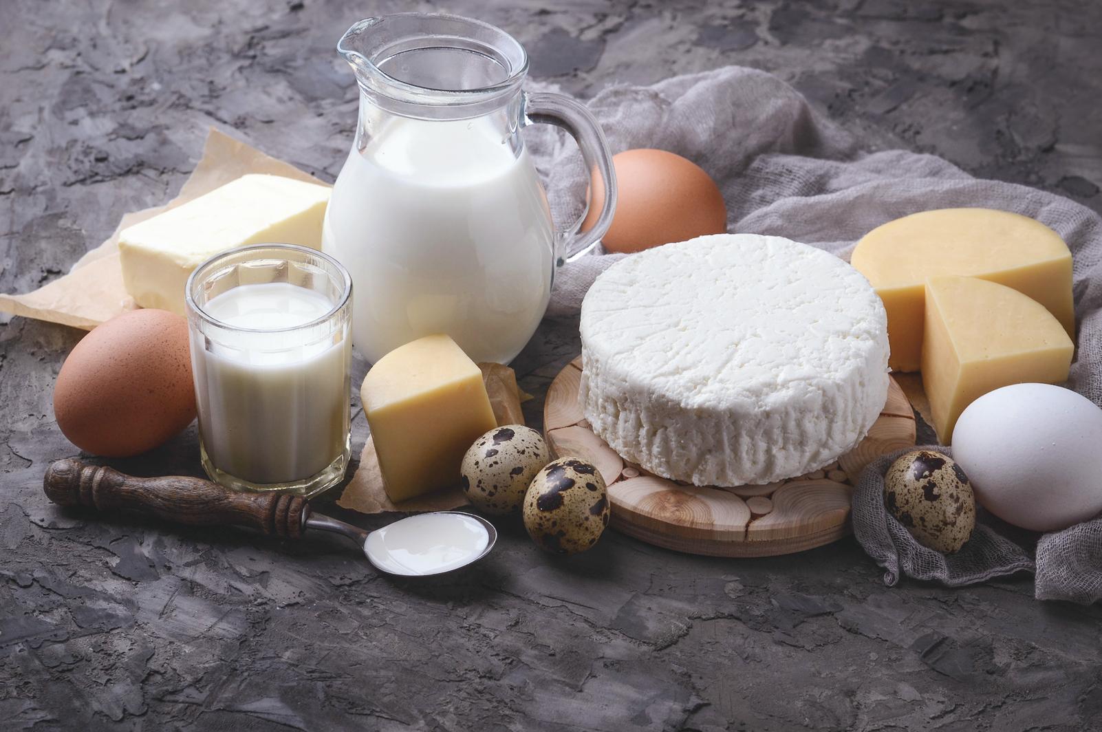 Produits laitiers, protéines : faux amis du sportif pour la fixation du calcium?